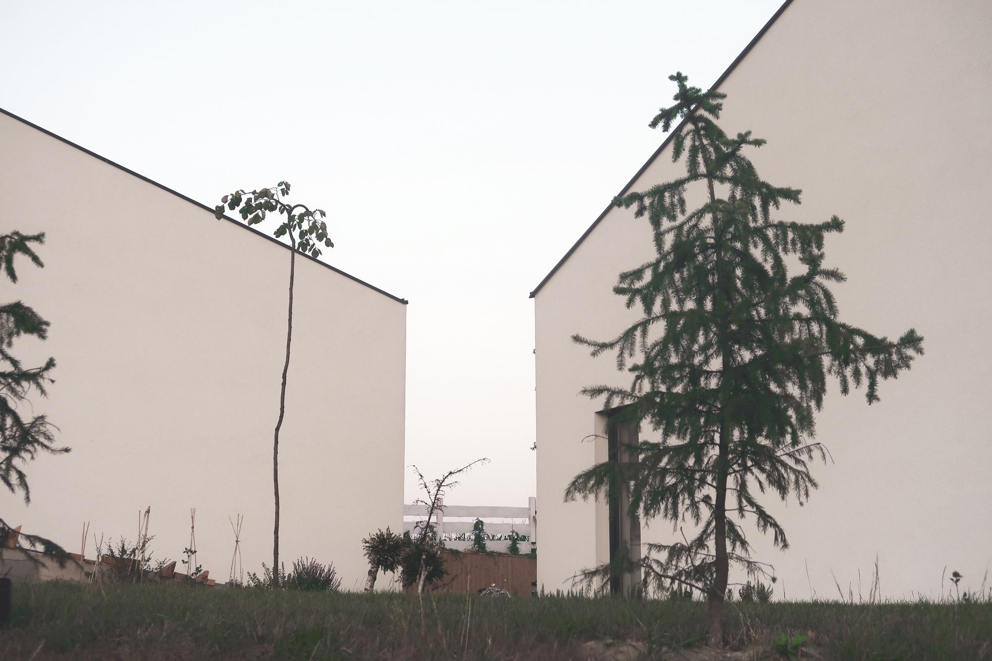 Najlepsze domy w Polsce: Dom Przekątny na Ruptawie